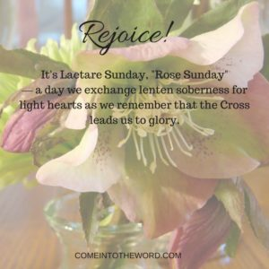picture of a lenten rose, calling us to Rejoice! on Laetare Sunday