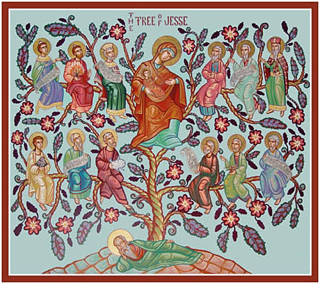 """A """"GROWN-UP"""" JESSE TREE (A Bible Reading Plan for Advent)"""