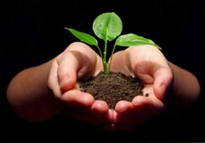 "GROWING UP: BECOMING ""FRUITFUL SOIL FOR THE WORD"""